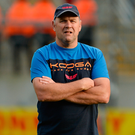 Scarlets head coach Wayne Pivac. Photo by Oliver McVeigh/Sportsfile