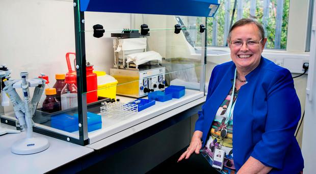 Dr.Sheila Willis Director General of Forensic Science Ireland at their offices in the Phoenix Park. Photo: Kyran O'Brien