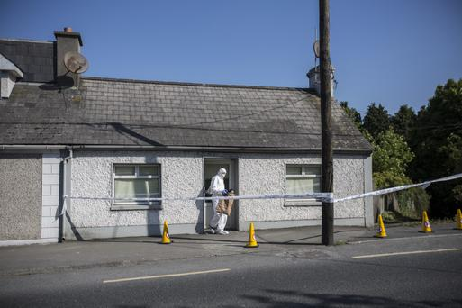 The house on the Old Dublin Road, Roscrea where an elderly couple were assaulted overnight. Picture: Mark Condren