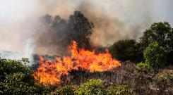 Gorse fires blazing in Co Sligo last week. Sligo County Council estimate that approximately 4,000ac was affected or threatened by fires in the Killery Mountains area