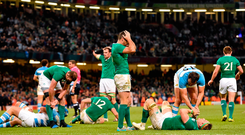 Rob Kearney knows the damage Argentina can do to Ireland's World Cup hopes – above, he holds his head at the final whistle after defeat at the 2015 World Cup. Photo: Sportsfile