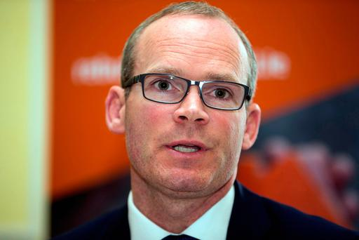 Housing Minister Simon Coveney. Photo: Mark Condren