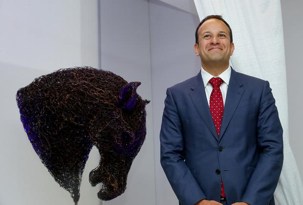 Social Protection Minister and frontrunner for the Fine Gael leadership contest Leo Varadkar at Mallinckrodt's new global medical device engineering centre at its campus at the College Business and Technology Park in Blanchardstown, Dublin 15, yesterday. Photo: Maxwellphotography.ie