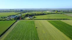 Newgrange Farm, Slane Co Meath. Silage was picked up by Byrne Agri Contractors, Stabannon Co Louth. Photo: Jan Jensma.