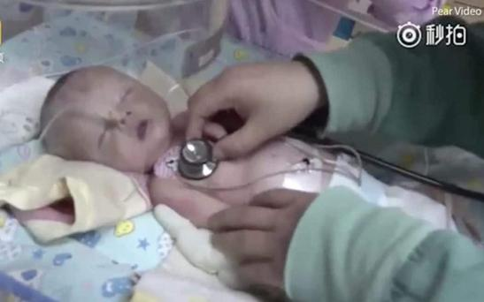 The newborn baby boy may have been buried alive by parents who thought he was dead
