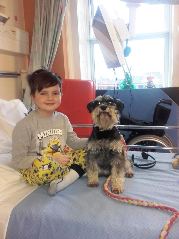 Daire battled with meningococcal septicaemia