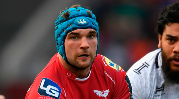Former Leinster lock Tadhg Beirne in action with the Scarlets. Photo: Stu Forster/Getty Images
