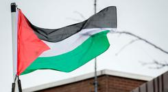 The flag of Palestinian flying at Sligo County Council HQ, Riverside, Sligo. Photo: James Connolly