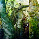 Conversing with Trees Again 2 by Patrick Walshe