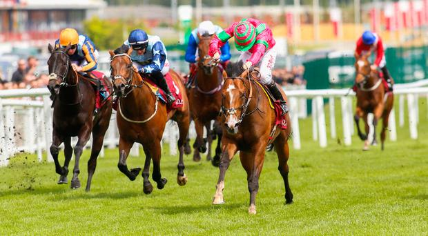 Visionary, with Jamie Spencer up (right), on the way to winning The Shalaa Carnarvon Stakes at Newbury. Photo credit: Julian Hebert/PA Wire