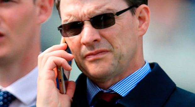 Trainer Aidan O'Brien has an impressive record in the Ascot Gold Cup. Photo: Mike Egerton/PA Wire