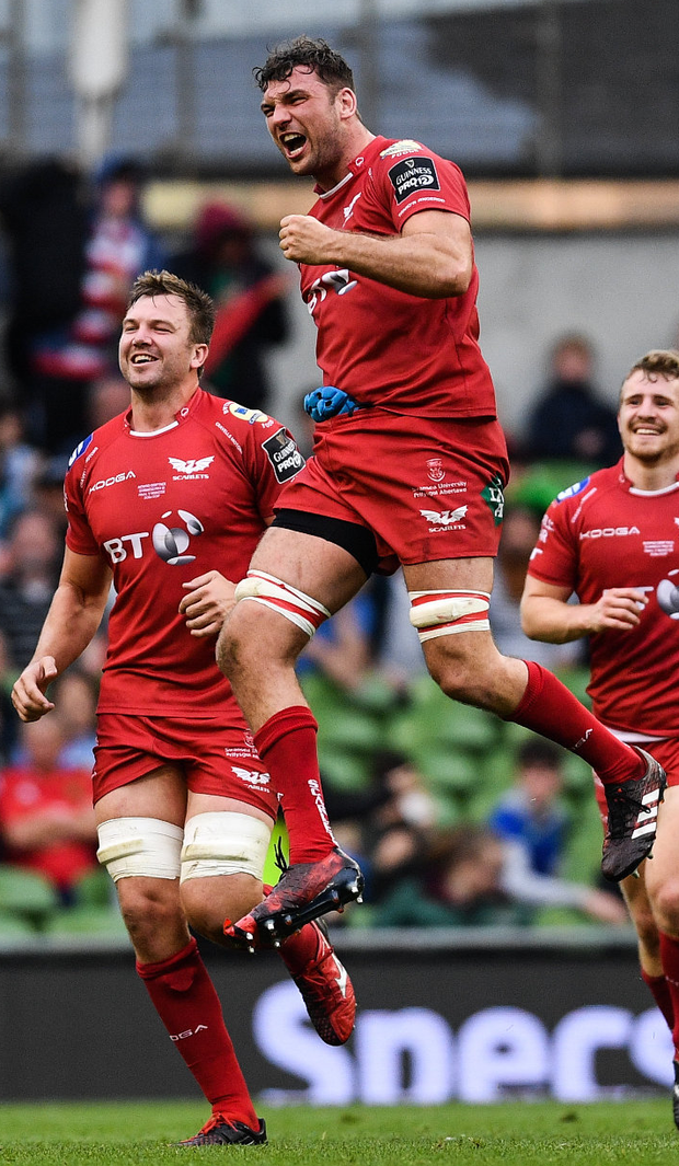 Tadhg Beirne of Scarlets celebrates at the final whistle. Photo: Sportsfile