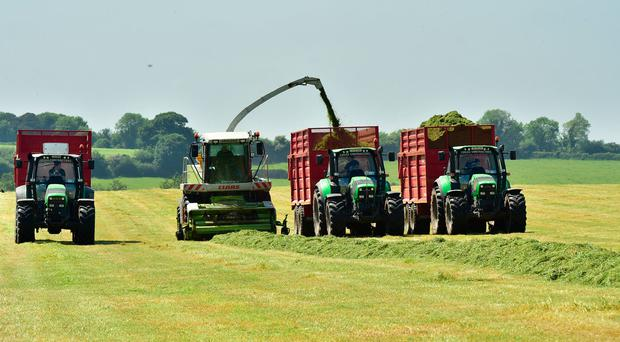 The return of the good weather after a period of rain was helpful with getting a first cut of silage done, as contractor Alan Lucas demonstrates. Photo: Roger Jones