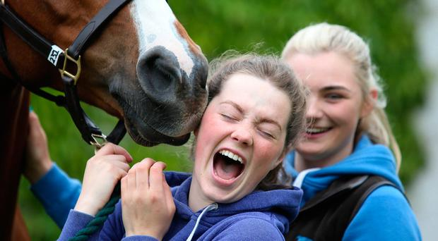 Christine O'Donnell, from Kilkenny, and Toni Quail, from Co Down, with Ringfort Rua, who competed at the Tattersalls International Horse Trials and Country Fair. Photo: Damien Eagers