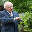 President Michael D. Higgins with his wife Sabina at Bloom yesterday Picture: Mark Condren
