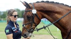 Groom Bryony Milton gives Chequers Play the Game a carrot after he won the Irish Field CCI3* event Photo: Lorraine O'Sullivan