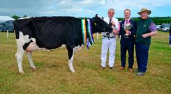 Ricki Barrett from Ballinhassig pictured at the Agricultural show at Belgooly Co Cork was with his overall champion dairy cow with judge Sean MacSweeney and cattle steward Martin O'Regan. Photo: Denis Boyle