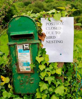 A postbox in Coronea, Co. Cavan has been closed down by An Post due to the fact that birds are nesting in it. Locals in the area say they saw a small bird, perhaps a Wren take up residence about two weeks ago and that the post box is actually full of nesting material. Gives a whole new meaning to sending out a tweet! Photo: Lorraine Teevan