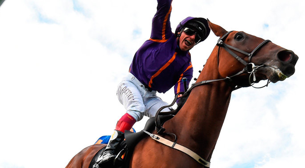 Willie Mullins will be hoping to be celebrating another Wicklow Brave victory after the Belmont Stakes in New York on Friday. Photo: Sportsfile