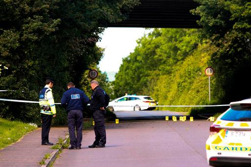 Gardaí comb a location linked to a fatal collision in which Declan Kelly was killed outside Arklow, Co Wicklow. Photo: Garry O'Neill