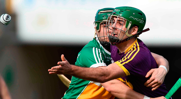 Shaun Murphy has been operating as the Wexford 'sweeper' this year. Photo: David Maher/Sportsfile