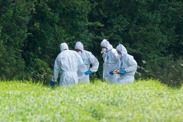 Gardaí search one of the crime scenes at a field outside Blackwater, Co Wexford. Photo: Mary Browne