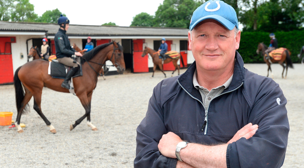 Willie McCreery at his Rathbride yard on the Curragh. Photo: Justin Farrelly