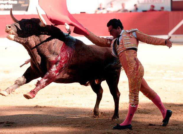 Ivan Fandino performs a pass with a Baltasar Iban bull during a bullfight at the Corrida des Fetes on June 17, 2017 in Aire sur Adour, southwestern France. / AFP PHOTO / IROZ GAIZKAIROZ GAIZKA/AFP/Getty Images