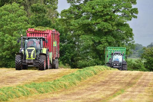 Martin Doyle from St Mulling Co Carlow, cutting silage with Doyle Bros contractors. Photo Roger Jones.
