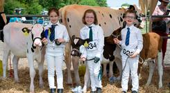 Cousins Julie Barrett, Natasha Barrett, Jack Barrett - all cousins pictured with their calves at the Cork Summer Show 2017. Photo: Clare Keogh