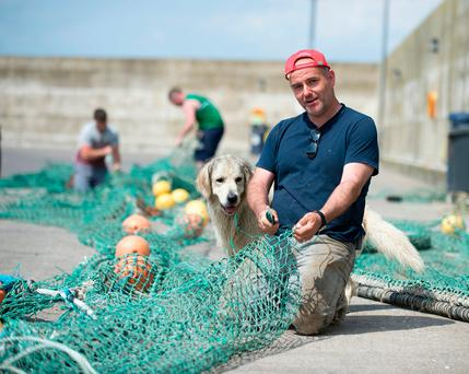 Fisherman Tomás Whelahan mending his nets on the pier at Clogherhead harbour, Co Louth, is worried about Brexit's impact. Photo: Ciara Wilkinson