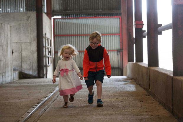 Caoimhe and Oran Power of Monkstown Co. Cork on their Uncle TOM POWER's farm Picture Clare Keogh