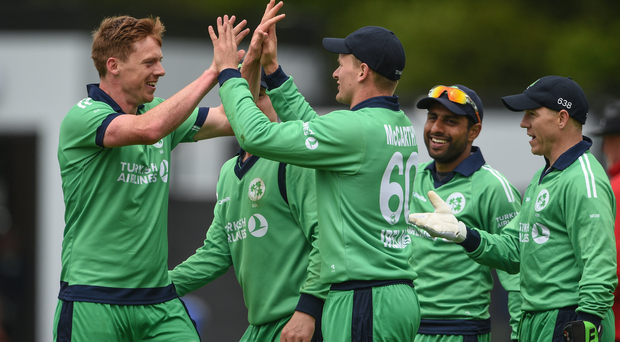 Barry McCarthy, second from left, celebrates with team-mate Craig Young of Ireland after catching Tom Latham, but Young, the bowler, was subsequently ruled for a No Ball penalty during the One Day International match between Ireland and New Zealand at Malahide Cricket Club in Dublin. Photo by Cody Glenn/Sportsfile
