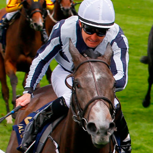 Alpha Centauri delivered the best performance of all of Jessica Harrington's horses at Royal Ascot. Photo: racingpost.com