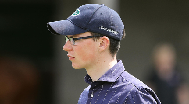 Joseph O'Brien viewing horses ahead of the Tattersalls Ireland Derby Sale, which begins today. Turnover is expected to exceed €15m with more than 600 horses going through the auction ring in Ratoath, Co Meath. Photo: Lorraine O'Sullivan