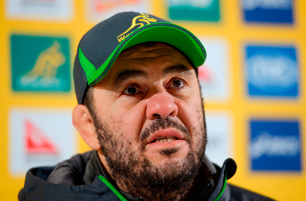 Australia head coach Michael Cheika. Photo by Seb Daly/Sportsfile