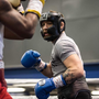 Conor McGregor (R) sparring Dashon Johnson. Credit - thenotoriousmma Instagram
