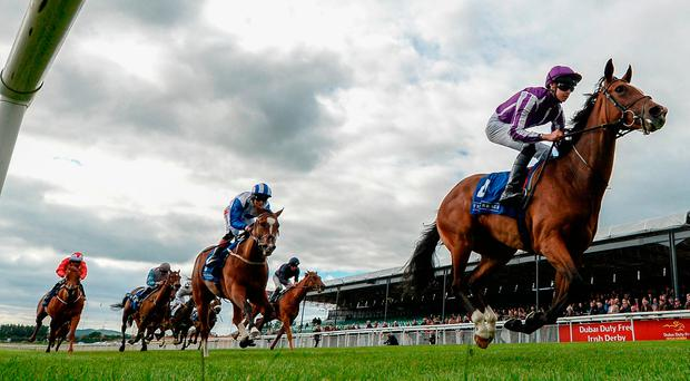 Happily, with Donnacha O'Brien up, on the way to winning the Westgrove Hotel EBF Fillies Maiden at the Curragh last evening. Photo by Seb Daly/Sportsfile
