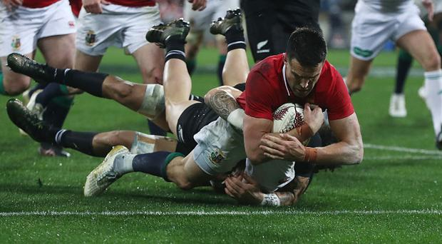 WELLINGTON, NEW ZEALAND - JULY 01: Conor Murray of the Lions dives over the line to score his team's second try during the second test match between the New Zealand All Blacks and the British & Irish Lions at the Westpac Stadium on July 1, 2017 in Wellington, New Zealand. (Photo by David Rogers/Getty Images)