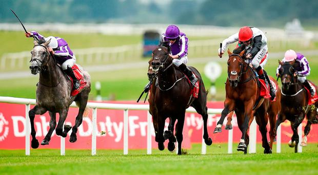 Capri (left), with Seamie Heffernan up, leads runner-up Cracksman (right), with Pat Smullen up, and third-placed Wings Of Eagles (Ryan Moore) on the way to winning the Dubai Duty Free Irish Derby. Photo by Seb Daly/Sportsfile