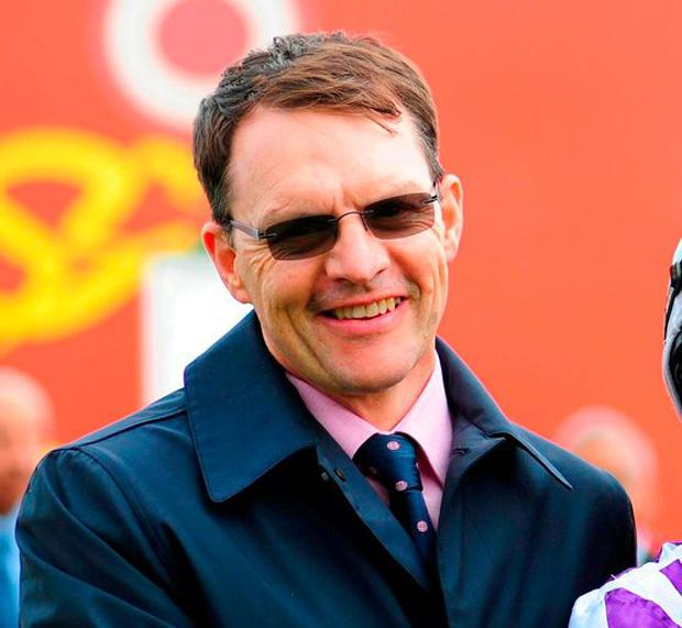 Aidan O'Brien experienced contrasting emotions at the Curragh. Photo: PA Wire