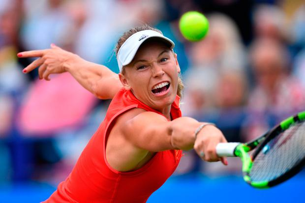 Caroline Wozniacki begins her SW19 campaign tomorrow. Photo: AFP/Getty Images