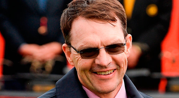 Aidan O'Brien's Cliffs Of Moher looks set to go off as favourite around 2/1. Photo by Seb Daly/Sportsfile