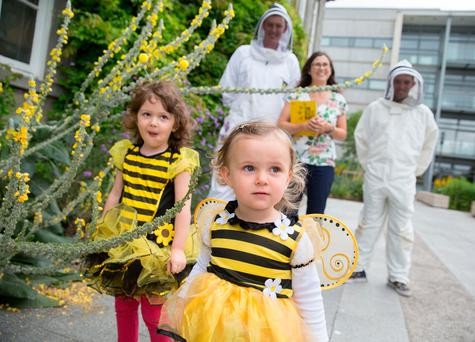 L-R Emilie Gavin aged 4 and a half and Molly Byrne aged 2, with Jane Stout, and beekeeper and Trinity SU President, Kevin Keane and Eion Dillon, Student. Photo: SHARPPIX