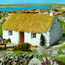 No place like home: We need new types of homes in Ireland, traditional models do not apply