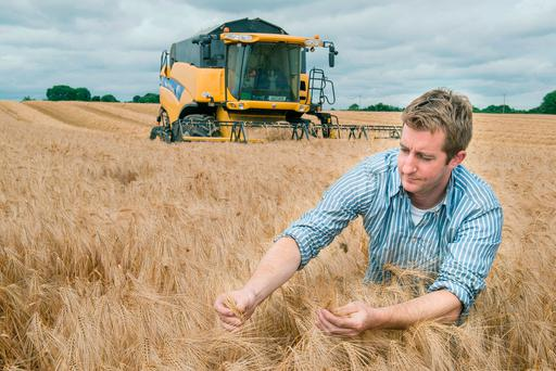 Cereal grower Denis Crowley, Crowley Farms, Carrigoon, Mallow, Co Cork harvested Meridian winter barley at Renny, Ballyhooly which yielded 3.8 tons per acre at 18pc moisture and bushelled sixty two kph. Photo O'Gorman Photography.