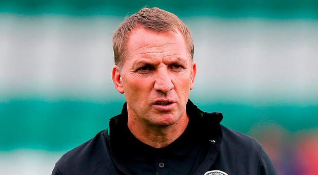 Celtic manager Brendan Rodgers. Photo: Donall Farmer/PA Wire