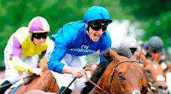 Harry Angel ridden by Adam Kirby celebrates winning The Darley July Cup during Darley July Cup Day of The Moet and Chandon July Festival at Newmarket Racecourse. PRESS ASSOCIATION Photo. Picture date: Saturday July 15, 2017. See PA story RACING Newmarket. Photo credit should read: Rui Vieira/PA Wire