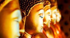 Buddhism: cultivate a spirit of non-attachment