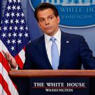 New White House Communications Director Anthony Scaramucci. Photo: Reuters/Jonathan Ernst